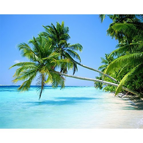 9123869f4 [Frameless] Diy Oil Painting, Paint By Number Home Decor Wall Pic Value Gift  Christmas Gift- Tropical beach 16x20 Inch on OnBuy