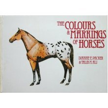 Colours and Markings of Horses