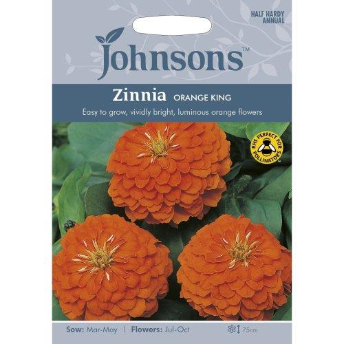 Johnsons Seeds - Pictorial Pack - Flower - Zinnia Orange King - 60 Seeds