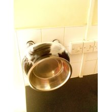 Stainless Steel Raised Dog Bowls & Stand-Non-Spill,Stick Multi Surface