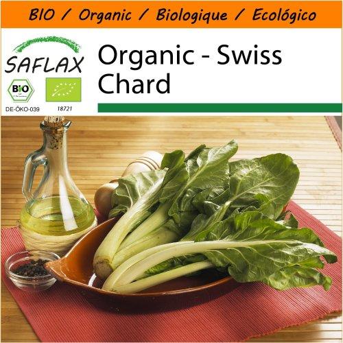 SAFLAX Garden in the Bag - Organic - Swiss Chard - 150 certified organic seeds  - Beta