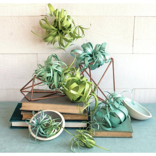 """Lia Griffith Paper Stack 8.5""""X11"""" 24/Pkg-Airplants"""