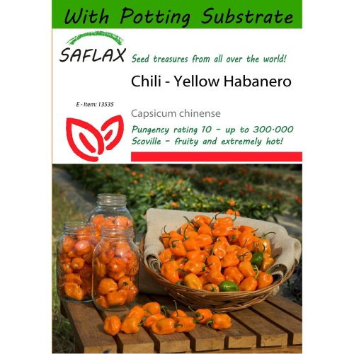 Saflax  - Chili - Yellow Habanero - Capsicum Chinense - 10 Seeds - with Potting Substrate for Better Cultivation