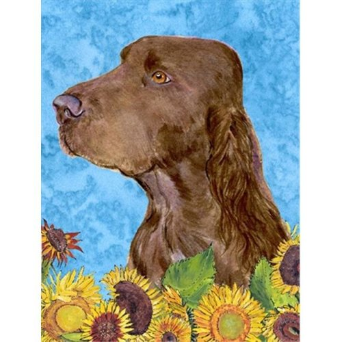11 x 15 In. Field Spaniel Flag, Garden Size