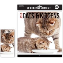 2018 Cats & Kittens Wall Calendar & Diary Christmas Birthday Gift Square Home Office Cute Animals