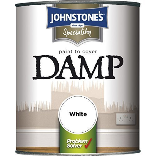Johnstone's Paint to cover Damp