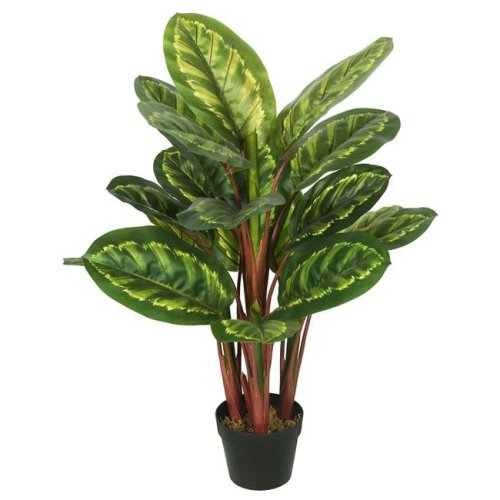 Vickerman TA170501 Peacock Plant Everyday Tree with Pot-Green & Brown - 3 ft.