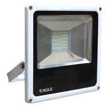 Eagle 20W Slimline LED Floodlight