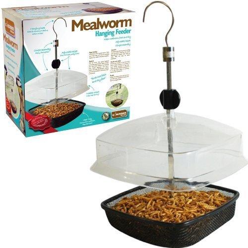 Hanging Mealworm Bird Feeder With Canopy - Kingfisher Deluxe Wild Garden -  feeder mealworm bird kingfisher deluxe wild hanging garden