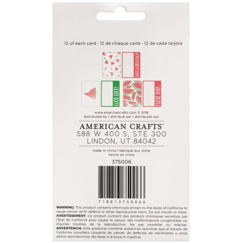 "American Crafts Memory Planner Inserts-Small Lunch Notes, 3.5""X6"""
