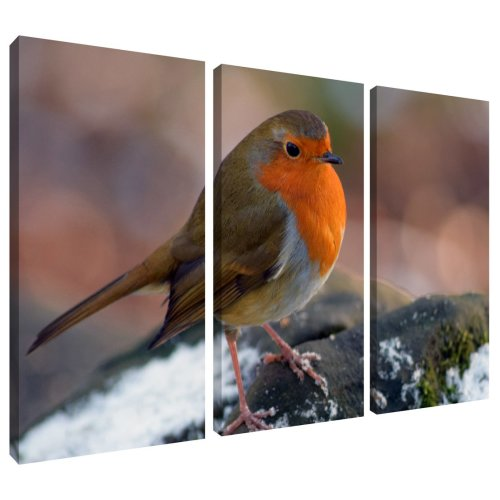 Robin Red Breast Bird Canvas Wall Art Print 3 Panel Split Picture