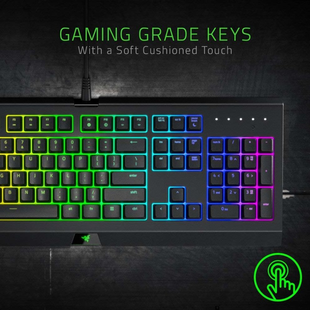 Razer Ornata Chroma Destiny 2 Edition Mecha Membrane Gaming Keyboard with  Mid-Height Keycaps, Ergonomic Design and RGB Chroma Backlight (US-Layout)