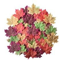 100 Mixed Autumn Maple Leaves