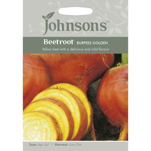 Johnsons Seeds - Pictorial Pack - Vegetable - Beetroot Burpees Golden - 125 Seeds