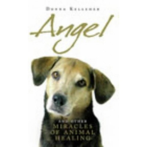Angel: and Other Miracle of Holistic Animal Healing: and Other Miracles of Holistic Animal Healing