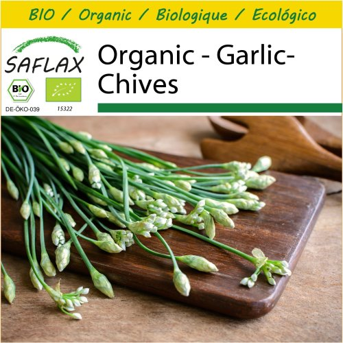 SAFLAX Potting Set - Organic - Garlic-Chives - 100 certified organic seeds  - Allium