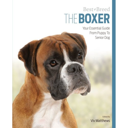 Boxer Best of Breed