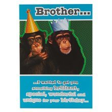 Hallmark Birthday Card for Brother, Funny Monkey - Medium