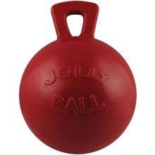 Jolly Ball 10 Inch